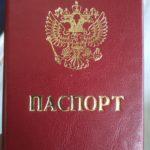 Паспорт кожа